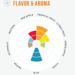 Yeast Aroma/Flovor Wheel