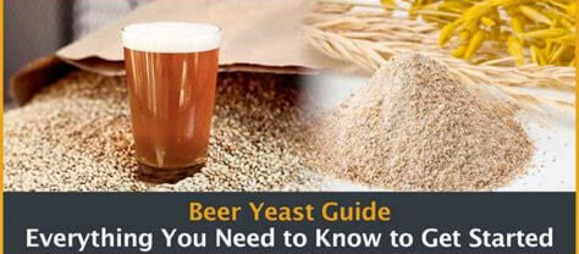 Yeast makes beer as the saying goes in the beer industry.
